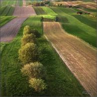 Polska, Zielonki