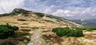 P8259076 Panorama